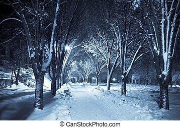 Silná procházka pod sněhem