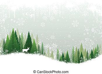 Sněhodné zimní lesy