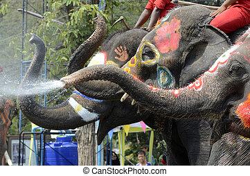 songkran, thajsko, festival, asie, ayutthaya