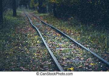 spílat, omezený, les, odhadnout, -, podzim, dráha