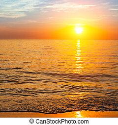 Spojení na oceán, složení přírody