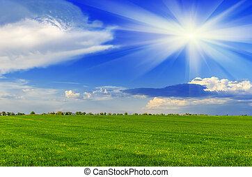 Spring sunný den