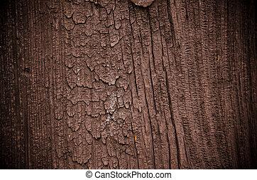Stará lesní struktura