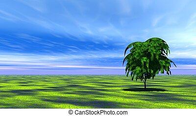 strom, pastvina, nezkušený