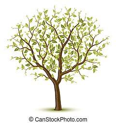 Strom se zeleným listem