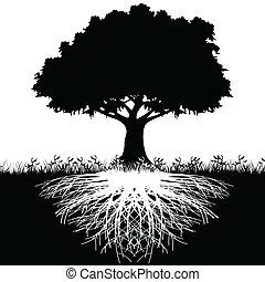 strom, silueta, kořeny
