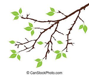 Stromová větev