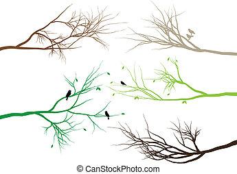 Stromové větve