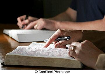 studovna, dvojice, bible