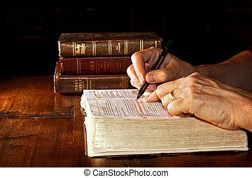 Studuje Bibli