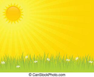 Sunny, letní den