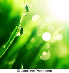 Svícená voda