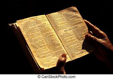 svatý bible