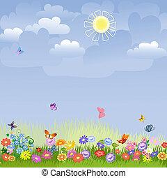 trávník, slunný den