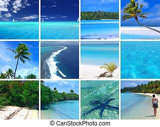 Tropické montáže
