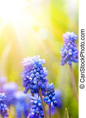 Umění krásné jarní květiny