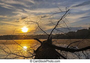 východ slunce, slunit se, republika, trebon, rybník, nad, čech