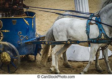 vůz, cirkus, bojechtivý, římský, druh, dřít se, gladiators