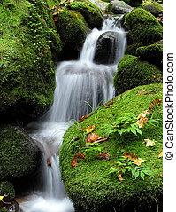 V lese je vodopád