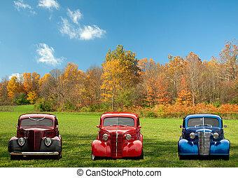vagón, barvitý, klasik