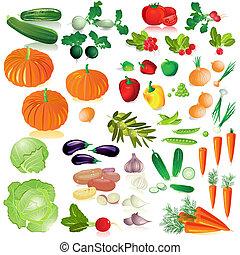 Vegetativní izolační kolekce