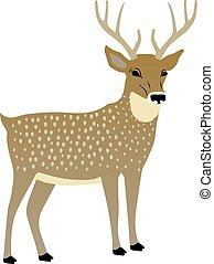 vektor, šikovný, deer., ilustrace