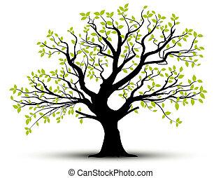 Vektor - jarní strom a listí