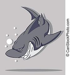 vektor, shark.