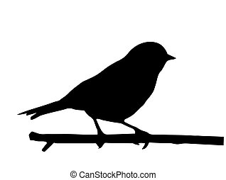 Vektor silueta malého ptáčka na větvi