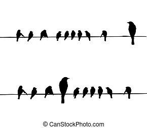 Vektorové siluety ptáků na drátě