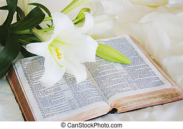 Velikonoční lilie a bible