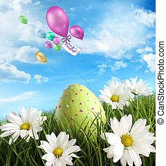 velikonoční tráva, vejce, sedmikráska
