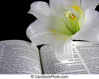 Velikonoce na bibli