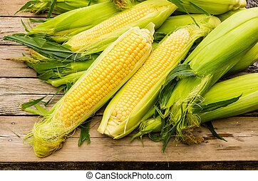 Vespody čerstvé žluté kukuřice