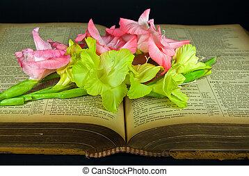 vinobraní, bible, gladiolas