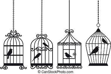vinobraní, ptáci, birdcages