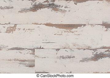 Vnitřní struktura dřeva