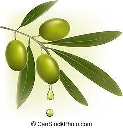 Vzadu se zelenými olivami.