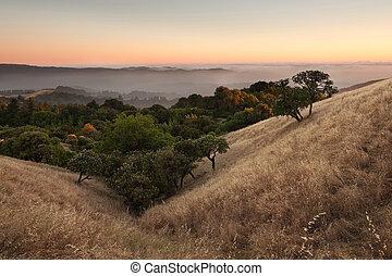 západ slunce, nad, kalifornie, louka, kopcovitý