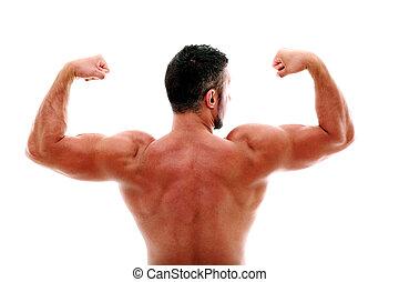 Zadní pohled na svalnatého muže, který ukazuje své bicepsy