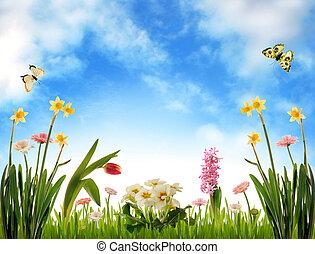 Zahradní krajina