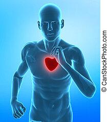 Zdravé srdce