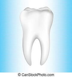 zdravý zuby