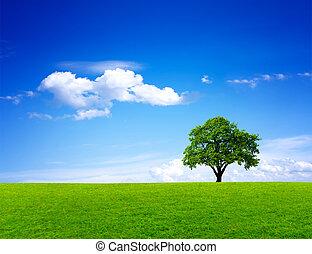 Zelená krajina přírody