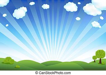 Zelené pole a modré nebe