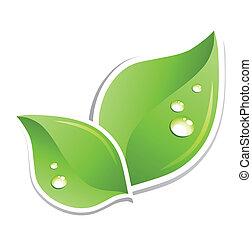 Zelenej list s kapkami vody. Vektor