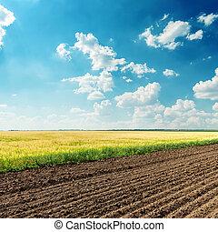 Zemědělské pole pod hlubokým modrým mrakem
