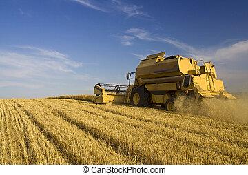 Zemědělství - dohromady