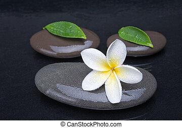 zen, stones