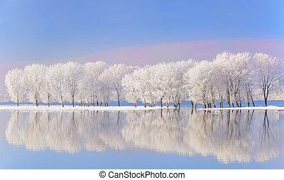 Zima je pokrytá polem